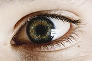 Child eye