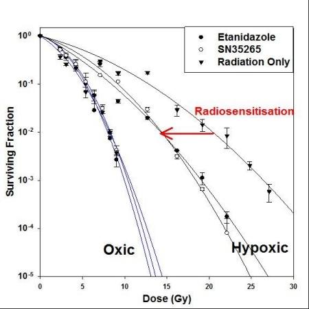 Targeting hypoxia oxygen mimetic radiosensitisers