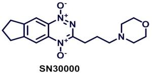 Targeting Hypoxia Bioreductive prodrugs
