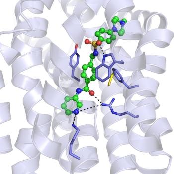 Targeting molecular responses to hypoxia