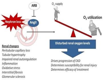 Oxygen_schematic
