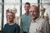 Osteoporosis lead investigators
